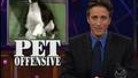 This Just In - Pet Offensive - 02/16/2000 - Video Clip | The Daily Show with Jon Stewart